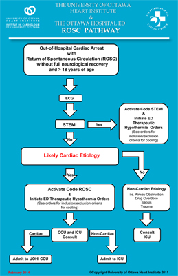 Regional Cardiac Arrest Program (Code ROSC)