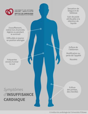 Symptômes d'insuffisance cardiaque : la sensation de fatigue et de faiblesse, l'essoufflement, qui peut même survenir lors d'activités légères ou pendant le sommeil, les difficultés à respirer en position allongée; le gain de poids attribuable à la rétention de liquide; l'enflure des jambes, des chevilles ou de l'abdomen
