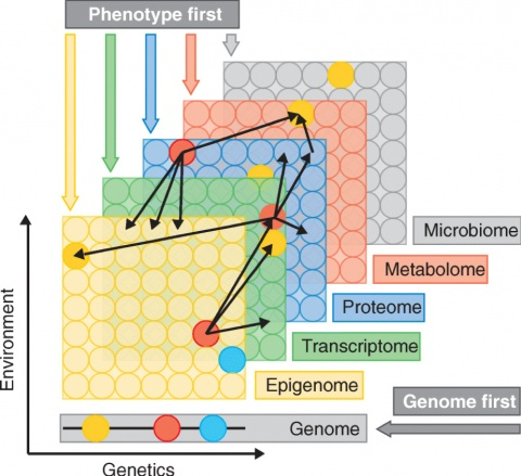 Environment versus genetics: Integrating clinical and multiple omics data to understand the causes of diseases; discoveries from this stage can then be used in personalized medicine research for prevention or therapeutic purposes