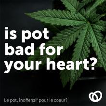 Decorative image: Marijuana and Your Heart, The Beat, October 2018.