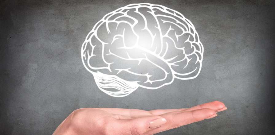 A hand in front of a chalk board drawing of a human brain