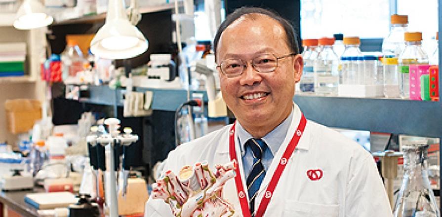 Peter Liu, M.D.