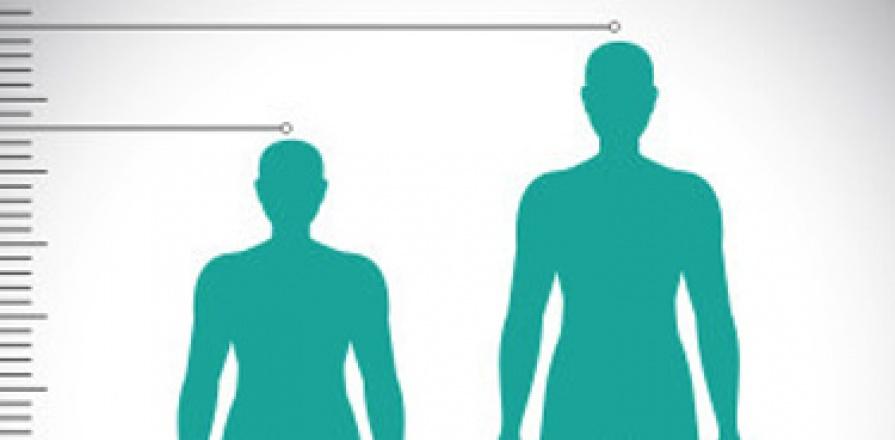 Une grande personne et une plus petite personne