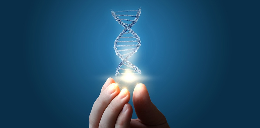 A composite image of a DNA double helix being held from fingertips