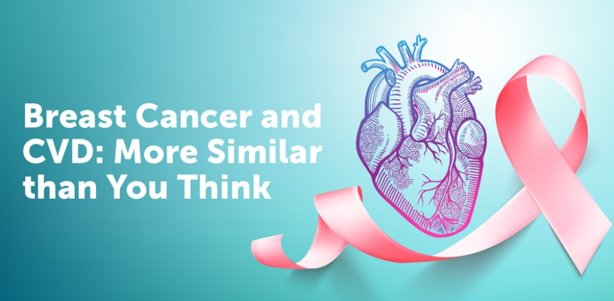 Breast Cancer and Cardiovascular Disease: More Similar than You Think